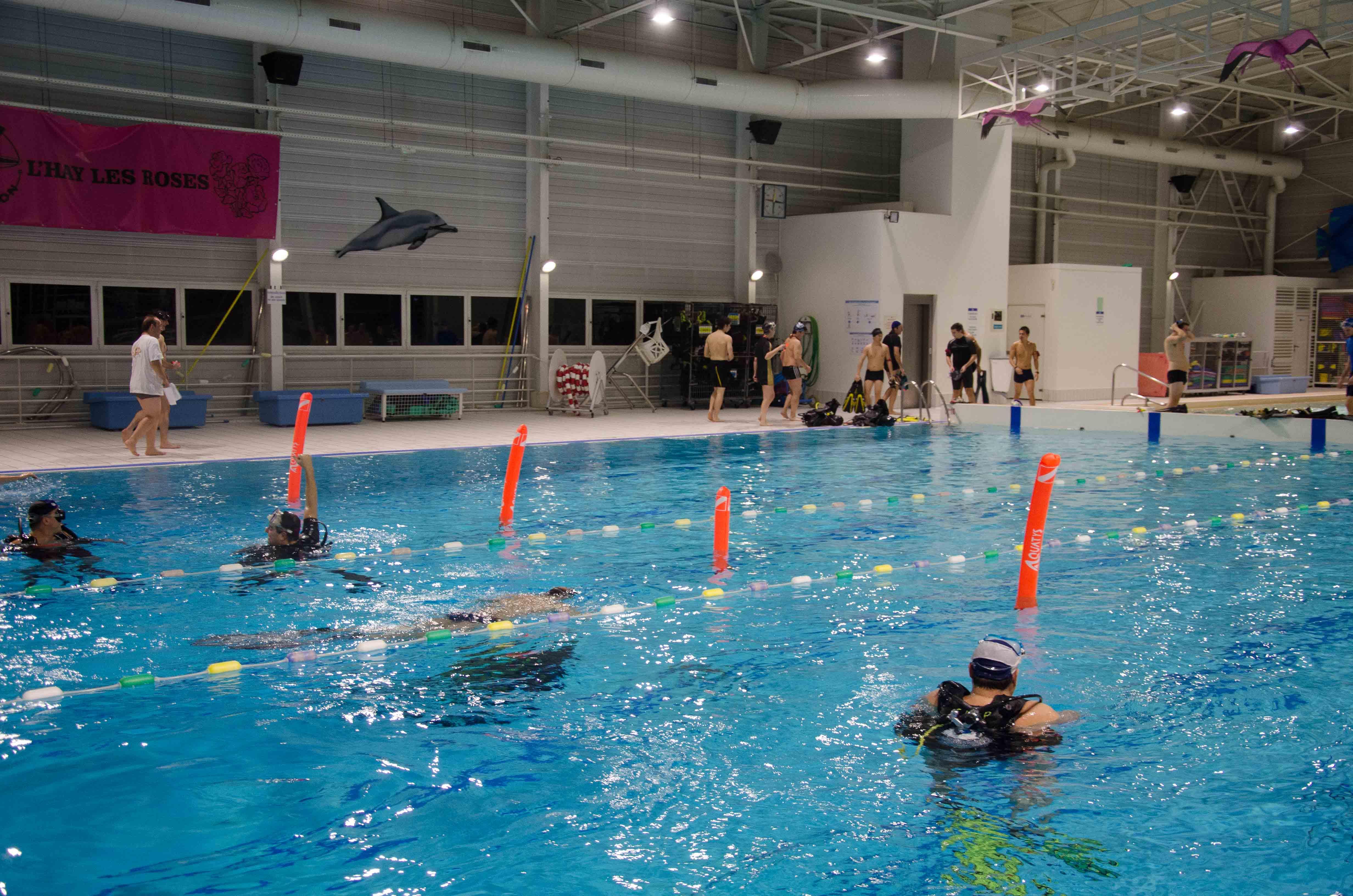 Challenge calpien 2016 club de plong e sous marine de l for Club piscine repentigny noel