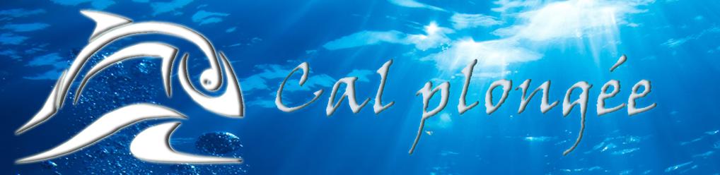 Club de plongée sous-marine de l'Haÿ-les-Roses